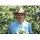 Cafés Trottet 10 Capsules Guatemala Compatibles Nespresso® Cafés Trottet