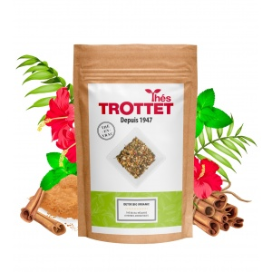 Détox Bio Organic thé en...