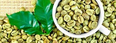 Café vert en grains 1kg à torréfier