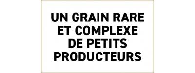 Café de spécialité - d'Artisan-torréfacteur depuis 1947 à Genève
